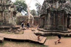 Ta Prohm Panorama